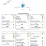 BusinessITScan - spindiagram en dashboard voorbeeld